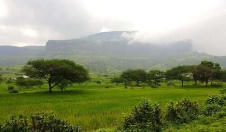 Anjaneri Fort Trek